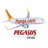 PegasusHavaYollari