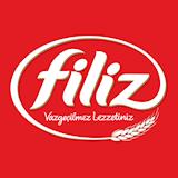 FilizMakarna